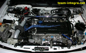 Detailing The Engine Bay